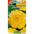 Бегония Камелия желтая крупноцветковая