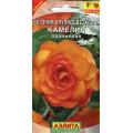 Бегония Камелия оранжевая крупноцветковая