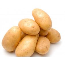 Картофель Лидер 1 кг. элита