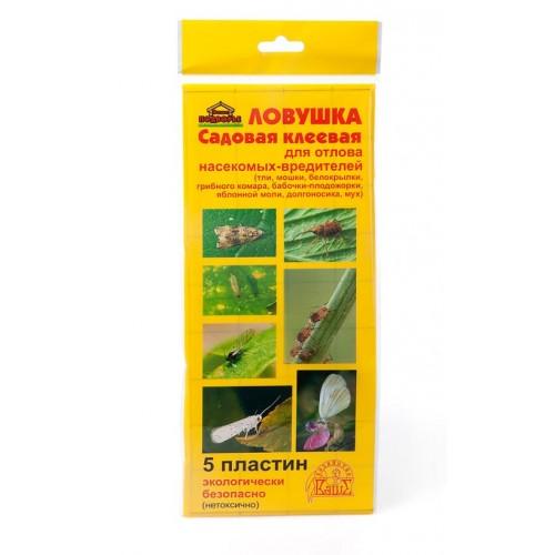Клеевые ловушки для насекомых своими руками