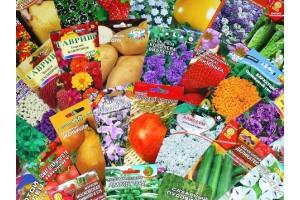 В нашем магазине новое поступление семян!